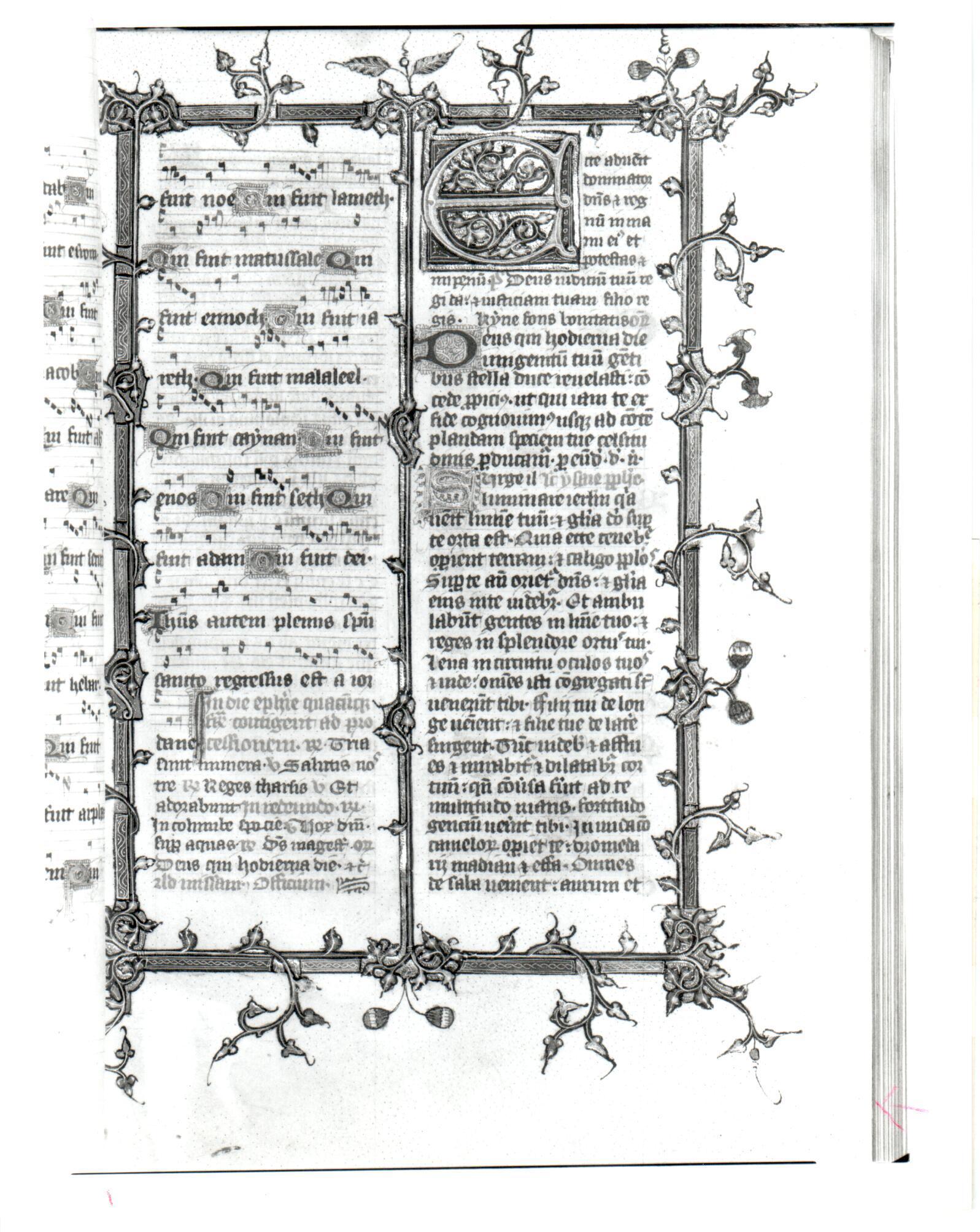 32 Beinecke MS 286, f. 42r