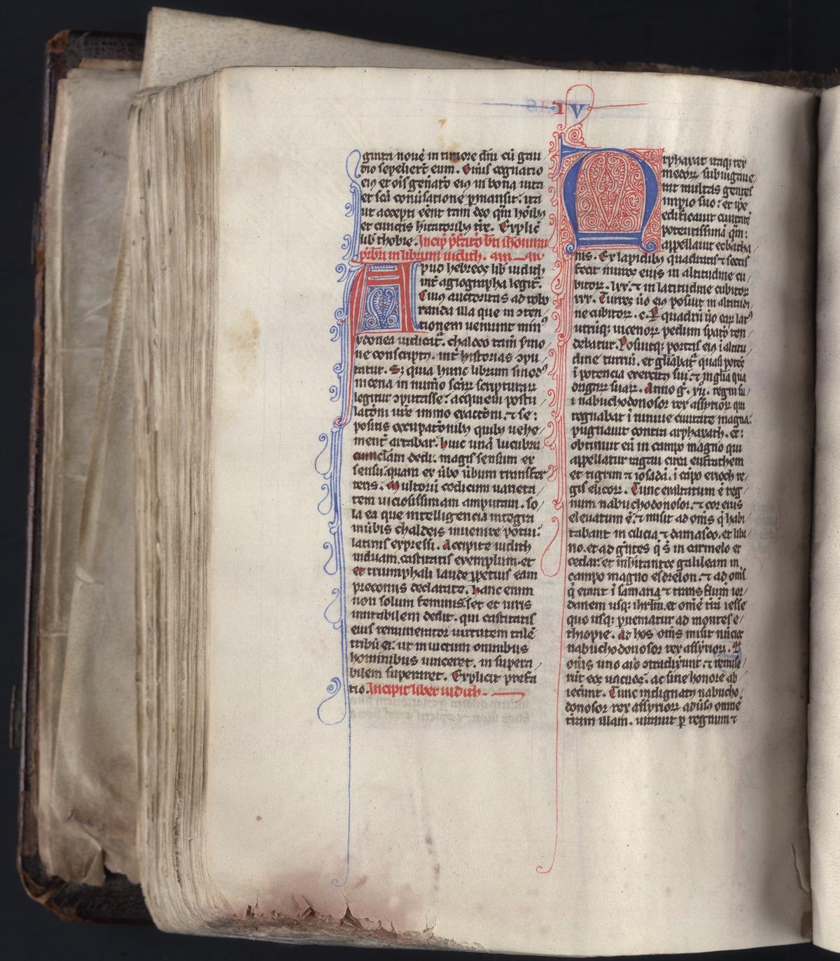 40. Beinecke MS 589, f. 256v (color)