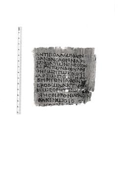 21. P.CtYBR inv. 1253