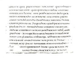 70. Beinecke MS 516.