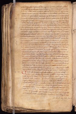 55. Beinecke Marston MS 24 (color1)