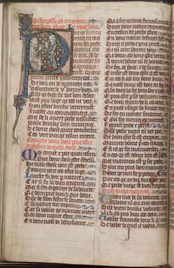 41. Beinecke MS 492, f. 16v (color)