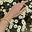 Thumbnail: Bracelet Upsilon MedecineDouce