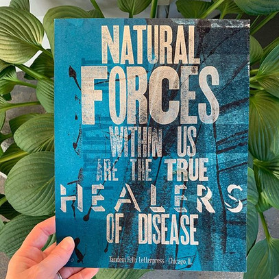 Natural Forces,True Healers