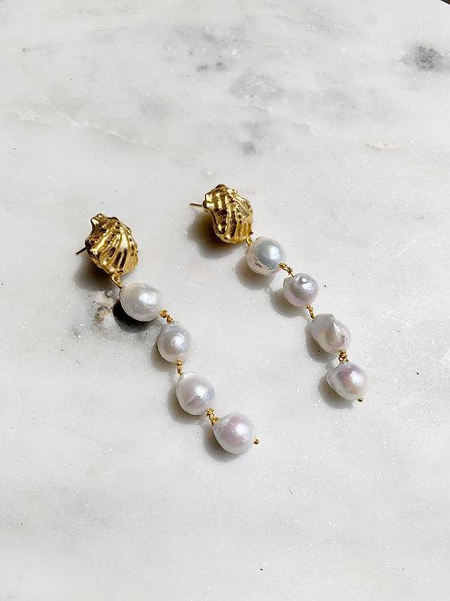 Fern Pearl Drops