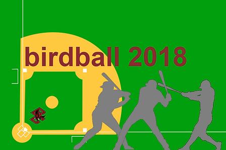birdball 2018.png