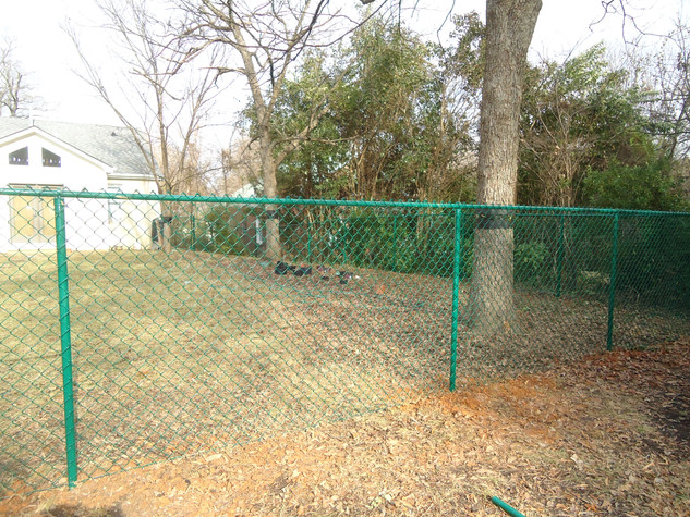 Green Vinyl Chain Link Fence