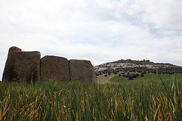 Monte-Isla de Magacela