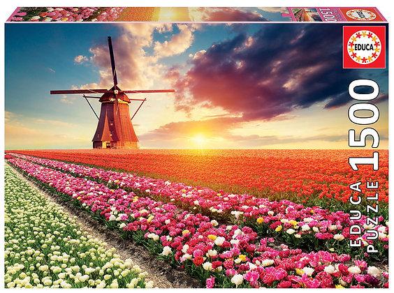 Paisaje de tulipanes