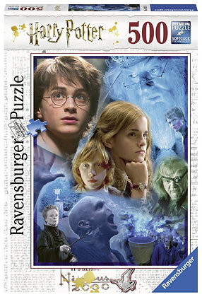 Harry Potter in Howarts