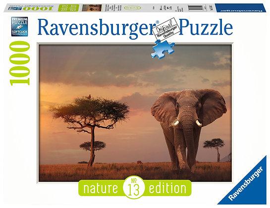 Elefante de los Masai Mara