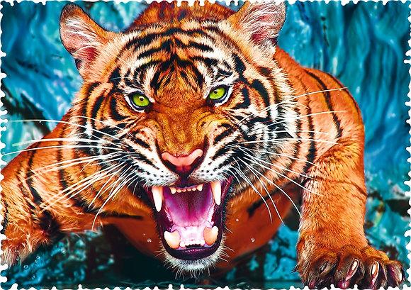 Tigre - CRAZY SHAPES