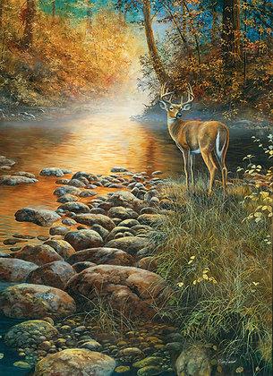 Paraíso forestal