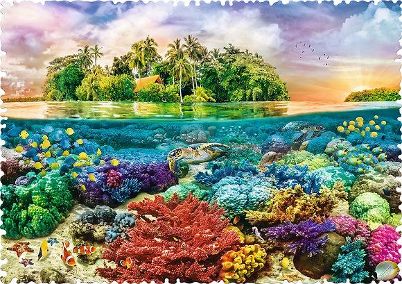 Isla tropical - CRAZY SHAPES