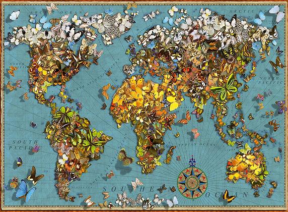 Mundo de mariposas