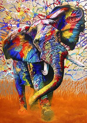 Colores africanos