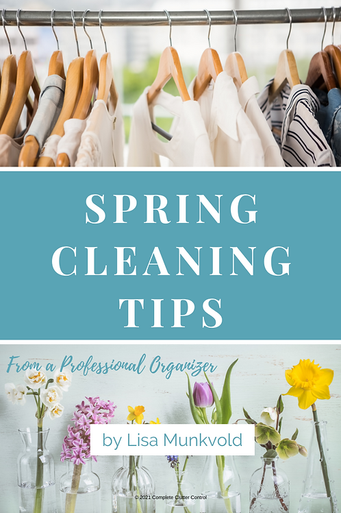 Spring Cleaning E-Book
