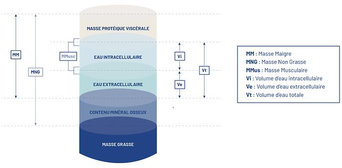 illustration Z metrixcompartiments.png