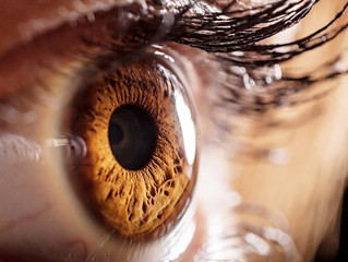 Unbelievable Facts About The Human Eye