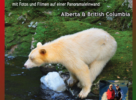 Expedition zu den weißen Schwarzbären