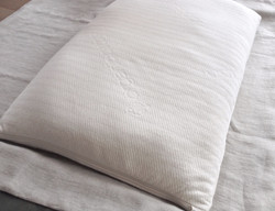 Organic_pillow_edited