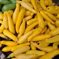 Zucchini_l.jpg
