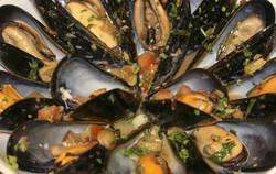 Blue PEI MusselsSL