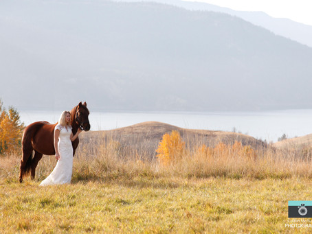 Brides and Horses.... some of my most favourite things!