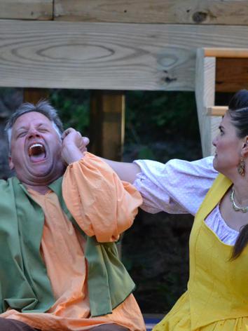 Comedy of Errors, 2013