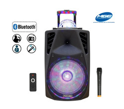 12 Inch LED Light Ball Speaker - Audio Party Rental Service - Miami 786-423-8759
