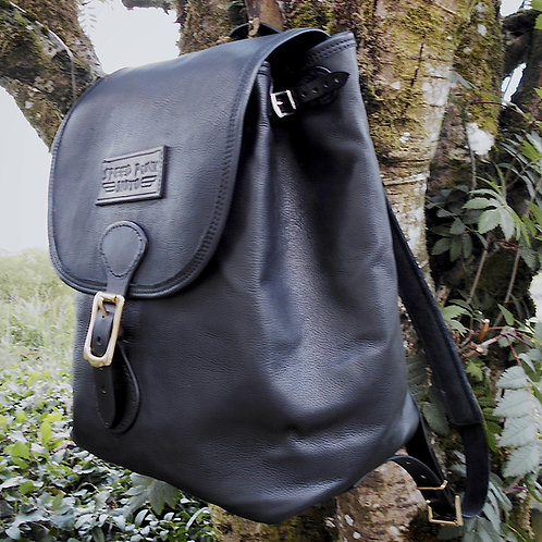 The four penny backpack