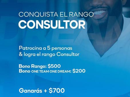 Bono Consultor ciclo 8