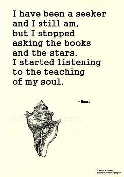Rumi 3.jpg