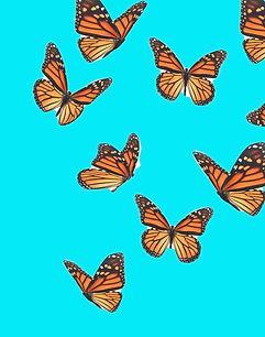 Beautiful%252520butterfly%252520flying%2