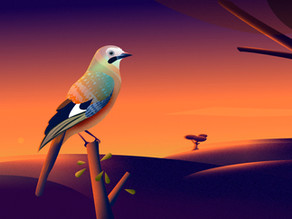 Sunset with bird: A vibrant scenery illustration in Affinity Designer.