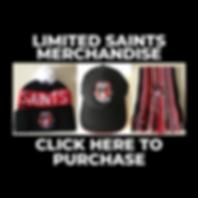 Copy of 2020 Saints Membership Packages.