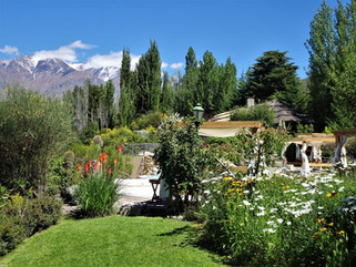 El Carmelo Garden