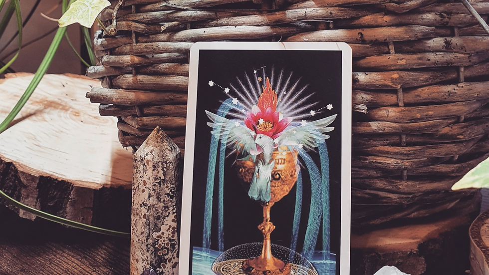 Message from source - Tarot Reading