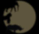 Last Chance Safaris logo