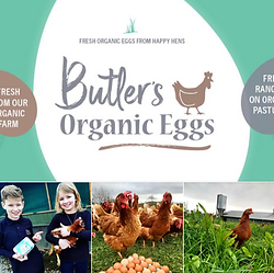 butlers-organic-eggs.png