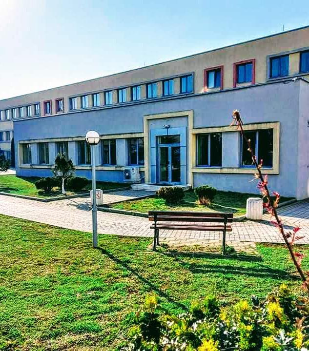 Sofia, Druzhba School