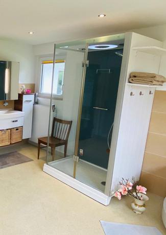 Moderne Dusche mit vielen Wellness-Optionen.