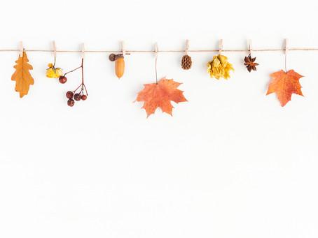 Top Autumn arts and crafts activities