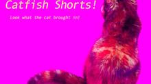 Catfish Short Film