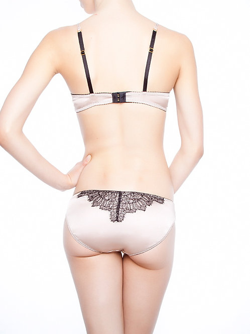 AMINTA BRIEF