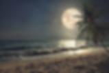 full moon_edited.png