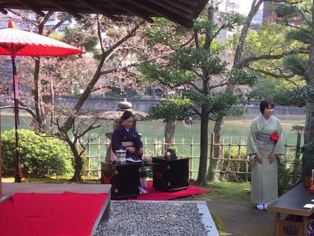 2017/04/02 縮景園で観桜茶会