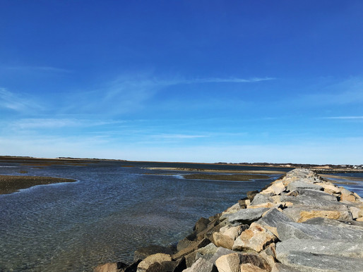 Have you ever been to Provincetown, MA?
