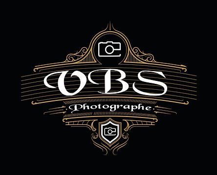 logo_vbs.png