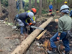 新メニュー造成中の「林業体験(仮称)」について考えてみました。